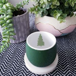 DAVIDS TEA | Green Tree Bubble Cup
